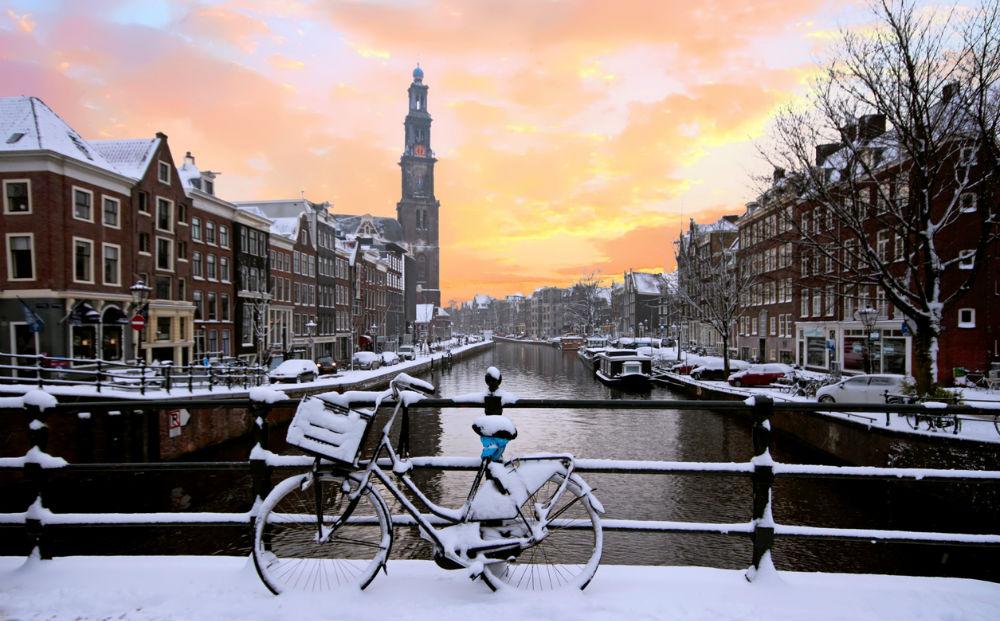 Kerstuitje en varen in Amsterdam