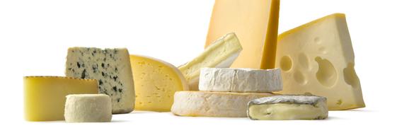 Cheese tasting Amsterdam